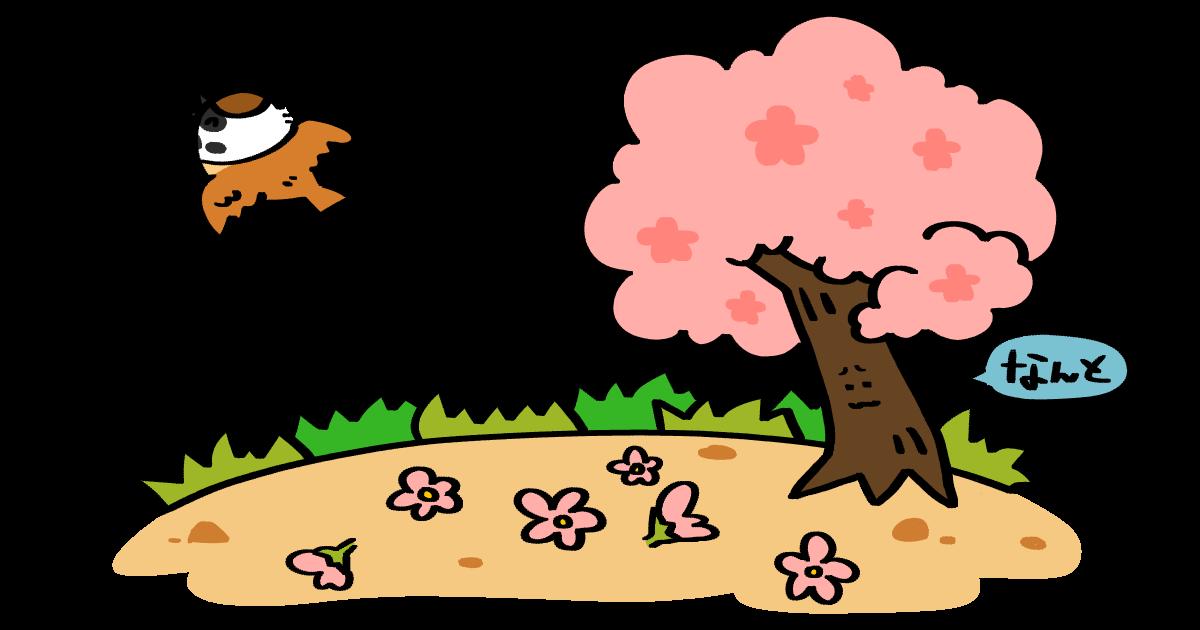 スズメさんと桜